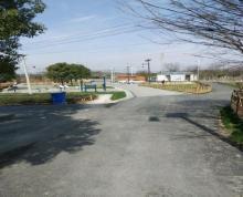 (出租) 江宁周边 大塘金薰衣草对面紧靠正方 仓库 100平米