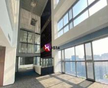 (出租)河西奥体北纬国际甲级纯写整层1716平豪华装修企业