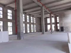 全新标准厂房 首层8.1米 可贷款 可分割 50年产权
