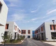 全新厂房招商可租可售,适合医疗器械,机电设备无污染企业