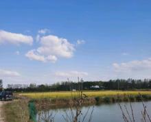 (出租)养殖用地,有鱼塘,水田,树林,草地