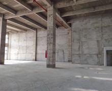 六合经济开发区 8.1米层高全新厂房 50年独立产权