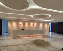 (出租)金奥中心 河西CBD核心区域 精装修 部分办公家具新地中心旁