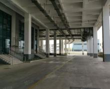 (出租)滨江工业园区20000平丙二类仓库出租