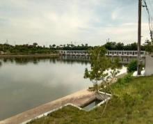 (出租)湖熟耀华社区成型农庄50亩