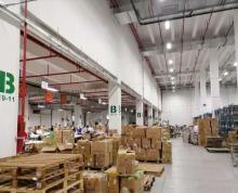 (出租)东南开发区1000平消防带喷淋厂房 产证齐全 场地大
