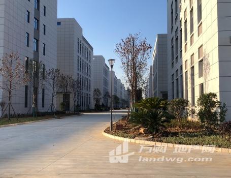 南京高淳经济开发区自持厂房(招商引资),医疗器械产业园、高端装备产业园、新材料产业园、食品产业园等