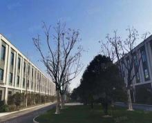 (出售)新海云谷旁个人全新标准厂房出售 两证齐全 首付两成 可环评