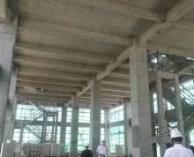 产权厂房 单层定制厂房 稀缺产品 政策扶持 10米层高
