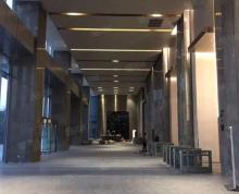 (出租)绿地万科云都会 金马路地铁口 全新楼盘 招租 优惠政策多