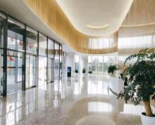 (出租)苏州湖东时代广场地铁口 太平金融大厦 精装户型 好停车 采光生成房源报告