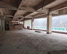 (出租)吴中区社区旁纯二楼大平层招租各行业