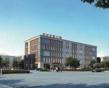 近浦口,50产权全新标准化厂房,挑高8.2M