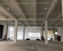 (出租)漕湖开发区1350平标准厂房招租