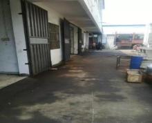 (出租) 东山 东山后马场 楼厂房100平米