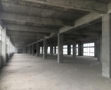 (出租)[CXE]江宁区禄口街道10000平方米园区厂房对外出租