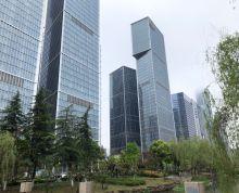国际商务中心 元通双地铁 CBD核心 金融城 现出精装小户型