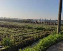 戴溪有农田25亩出租1000元一亩,