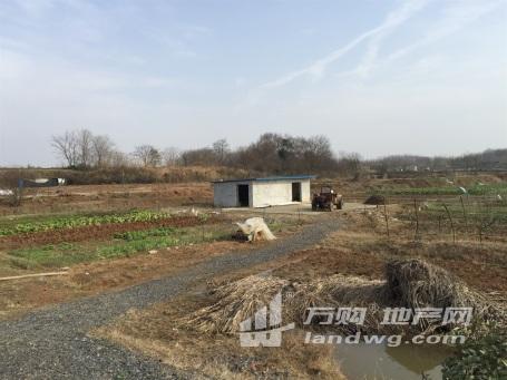 江宁区湖熟街道周岗社区150亩农场