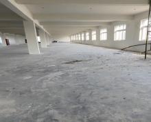 (出租)渭塘1~3层标准厂房出租 院子内空地大