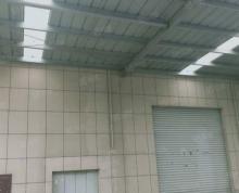 (出租)新站东方大道附近4楼1160