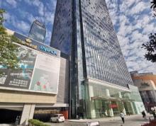 (出售)政务区 华润大厦写字楼急售 160平 230万