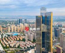 (出租)南京新 河西金鹰世界 新鸿基 全球招租 视野开阔