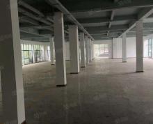 (出租)独栋厂房三层每层500平,可做科研,总部,办公,欢迎咨询