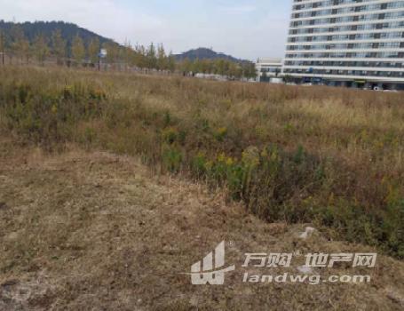 [O_771594]南京市溧水产业新城商办混合用地推介