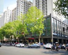 华侨路临街旺铺 靠近房产局 坐拥新街口商圈 欢迎咨询
