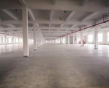 (出租)独栋20000平全新装修双层厂房可分租