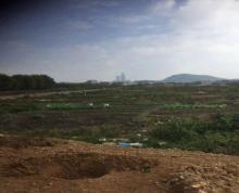 (出租) 内环路土地近椒江,路桥,洪家,15亩,1.3万每亩