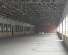(出租) 禄口出租单层厂房共8000平方可分租