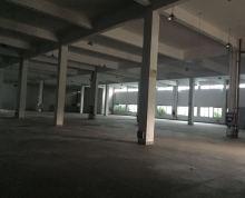 【新港开发区1800平米标准厂房对外出租,也可做仓库】