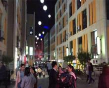 绿地缤纷广场,五塘广场地铁口,人流聚集地,现房出售