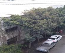 (出租) 路桥灵山西街一楼铁皮仓库300平方出租,高4.5米