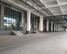 (出租) 江宁滨江1万平高台库,可分租