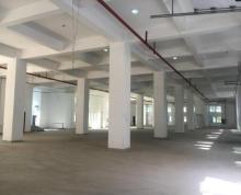 全新办公、仓库、工业厂房招租,最高5.5米层高