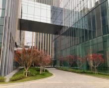 (出租)河西CBD核心区 面宽80米 展示面好 行业不限 可分割