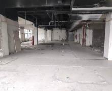 (出租)大光路光华路沿街商业圈招租可多业态分整租南理工大学旁星展大厦