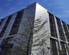 (出租)园区1600平新建厂房出租(开发商),押三付三,价优房好