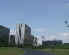 南京仙林210平低密办公