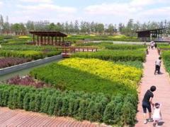 苏州太仓市西郊镇60亩生态园