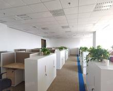 (出租)南京地标 金陵亚太商务楼 493平 全套家具 信托聚集地