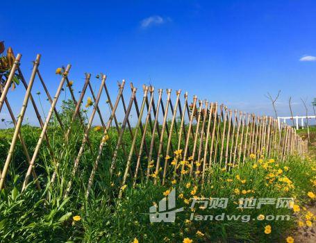 南京六合区竹镇镇600亩山坡地(含50亩水面)