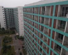 (出租)盛泽5000平独栋招公寓 全明房 有电梯 好停车 年限长