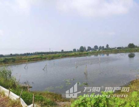 (出租)出租或转让150亩鱼虾蟹类水产养殖场(大闸蟹,龙虾)