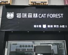 (转让)万达广场 金街 猫咖