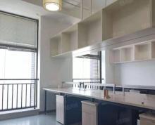 (出租)中南城百货精装 办公 有家具 随时看房