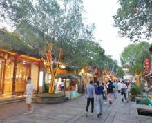 (出售)老门东独立产权综合商业体客流超大 包租自营都可以